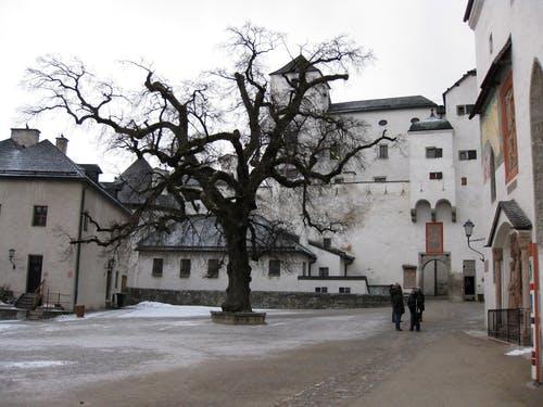 salzburgerland Oostenrijk